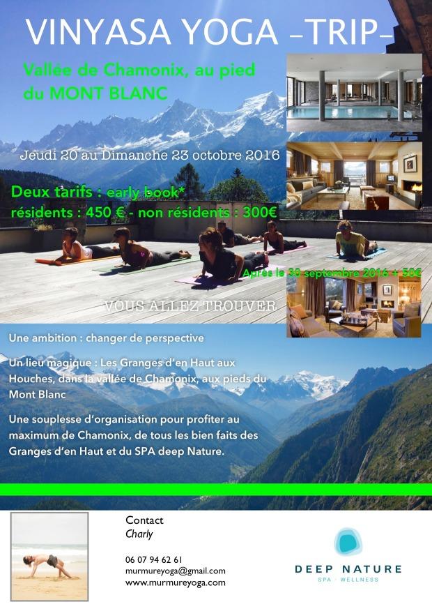 pub stage de yoga octobre 2016- francais